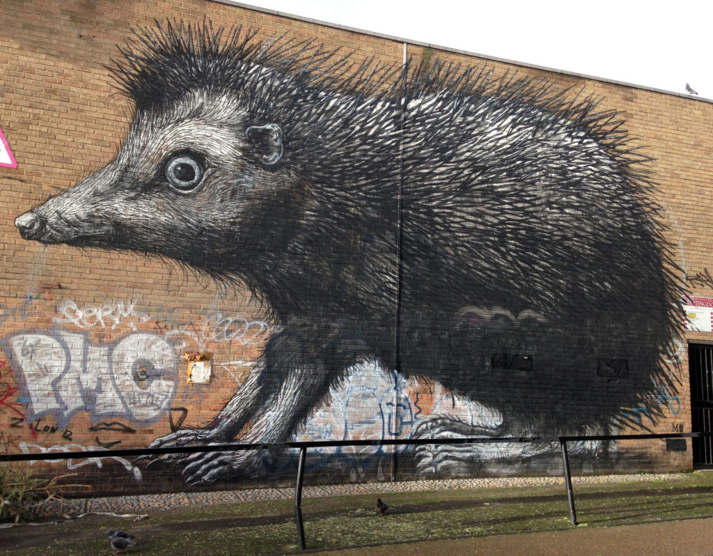 Posted by admin at 1026 pm tagged with england london london street art roa street art street art england street art london street art uk